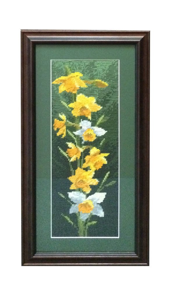 Daffodil cross stitch framed