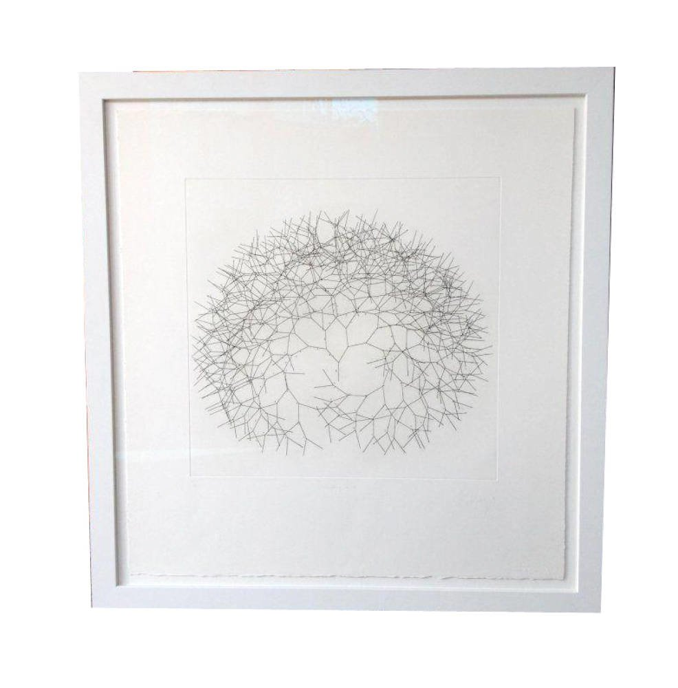 Limited Edition Branching Line By Tony Cragg Hard ground etching float mounted - limited edition tony cragg hinging tape uv filtration