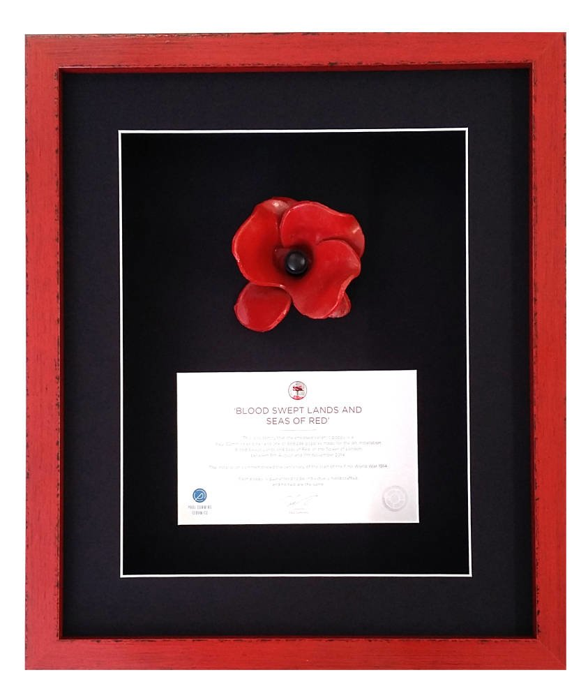 Paul Cummins Ceramic Poppy Framing - Main Image
