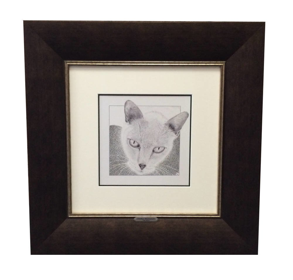 Pencil drawing framed - cat portrait - Main Image