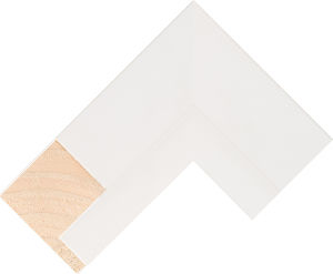 513127000 White LJE Float Moulding Chevron