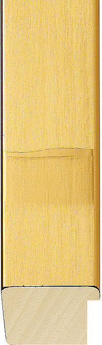 Manhattan Range Gold Flat Moulding (#437972)